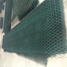 电焊网片PVC电焊网圈玉米外墙保温世鹏丝网质量保证做工精细