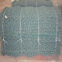 世鹏丝网供应优秀质量石笼网边坡防护网家禽养殖质量保证