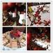 中西自助餐、茶歇会、中式围餐、烧烤、各种餐具桌椅租赁