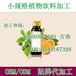 30ml植物饮料代加工,小规格植物饮料贴牌厂商