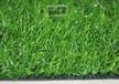 山东森悦人造幼儿园专用草坪