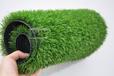 森悦幼儿园专用草坪,仿真草皮