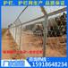 刺绳防护围墙网三亚山地围栏隔离栅钢板冲压海南墓园护栏网