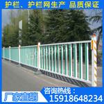深圳道路护栏厂家直销报价罗湖机动车道隔离栏人行道甲型护栏现货图片
