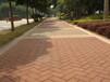供应景观园林透水砖、生态透水砖、渗水砖、海绵城市透水路面砖