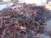 番禺工厂积压废品回收番禺工厂库存物资回收番禺专业回收废旧公司