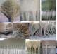 鄂尔多斯批发竹扫把扫马路庭院环卫大扫把各种交通设施