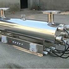 紫外线杀菌器紫外线杀菌器设备STL-240