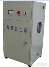 厂家专业定做一体化臭氧发生器杀菌除异味图片