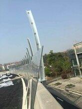 高速公路隔音墙声屏障专业生产厂家环保降噪隔声屏障图片