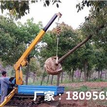 供应三普小型吊车爬爬车随车吊移树机图片