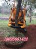 挖树机械价格