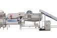 净菜加工设备旋流式洗菜线AlsterX-100原装进口功率12.5kw