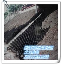 边坡绿化植草格塑料斜坡河道护岸绿化格室护坡土工格室网绿化安阳