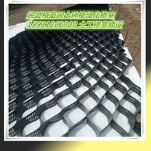 护坡边坡固土格子黑色蜂巢网格塑料护坡格室斜坡边坡绿化塑料格栅荆州