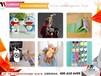 重庆青少年创业开动漫店选AA国际动漫