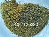 聚合硅酸铝铁生产,聚合硅酸铝铁市场价格