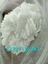 郑州氢氧化钠片碱烧碱火碱粒碱价格供应商