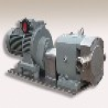 邯鄲泰盛銷售的不銹鋼凸輪轉子泵價格合理