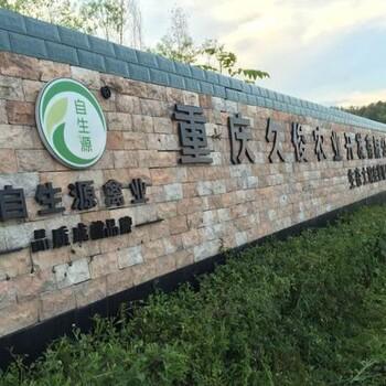 蓬安土鸡苗出售常年供应青脚红羽鸡苗品质保证包运输
