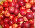 山东日照油桃价格批发,山东油桃市场供应图片