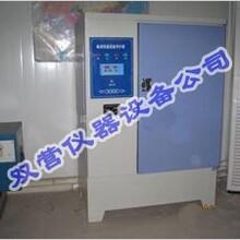 YH40B型水泥混凝土标准养护箱/混凝土标准养护箱价格图片