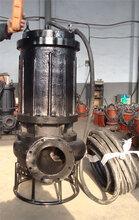 抚顺高扬程耐磨泥浆泵污泥泵图片