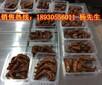 江阴熟食包装气调包装机厂家供应,MAP-1Z550气调保鲜包装设备