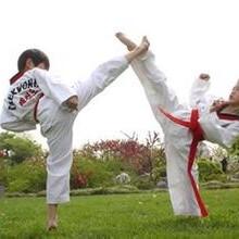 沈阳跆拳道培训班