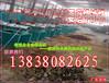 菜籽榨油机_油菜籽榨油机价格_两相电榨油机配件哪里最全