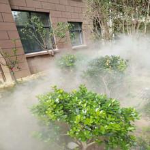 菏泽人工造雾设备品牌图片