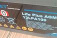 法国路盛蓄电池12LPA100报价-直销