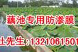 藕池專用防滲膜多少錢價格哪里便宜
