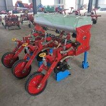 广西拖拉机带平地玉米播种机四轮带悬浮玉米播种机多少钱