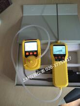 硫化氢(H2S)气体检测仪
