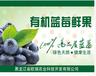 供应蓝莓茶价格-蓝莓饮料