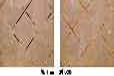 长春市朝阳区瓷砖美缝施工