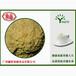 广东五谷杂粮膨化小米粉
