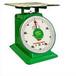 厂家批发50kg系列弹簧刻度盘秤厨房平板弹簧秤