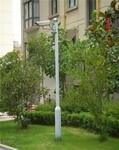 摄像机立杆创图供摄像机立杆服务站点联系方式图片