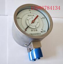 雙針雙管差壓表,雙針差壓壓力指示表圖片