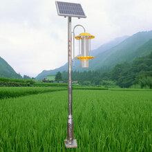 天阳能杀虫灯立杆式杀虫灯竖网杀虫灯价格厂家直销图片