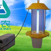 直流电蓄电池杀虫灯悬挂式灭虫灯诱虫灯价格低竖网诱虫灯图片