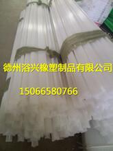 高分子衬条垫条托条聚乙烯耐磨条在专业厂家