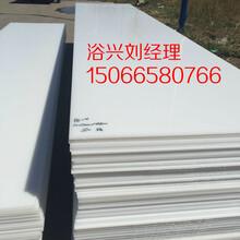 青州白色pe板聚乙烯板多少钱一公斤