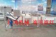 浙江食品机械HQX-3500全自动高压喷淋杨梅清洗机翻浪葡萄清洗机