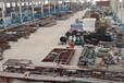 供应泽宇重工优质片状水泥仓300吨带仓顶脉冲除尘器