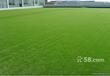 北京假草坪出售北京仿真草坪价格