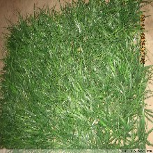 北京卖假草坪价格塑料草坪厂家