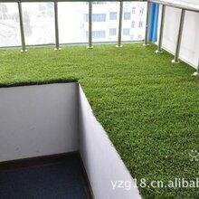 北京仿真草坪價格塑料草坪廠家